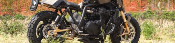 """Kawasaki ZXR 1100 """"Lamaialona"""""""